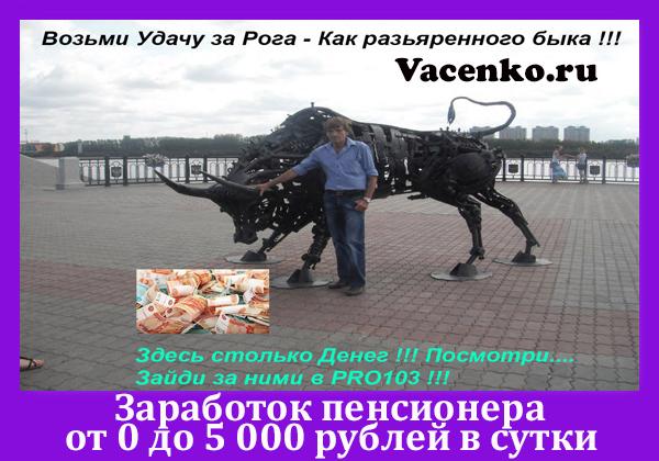 Заработок для пенсионерив